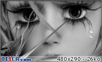 img http://mk6.ti1ca.com/78yxvief.jpg /img